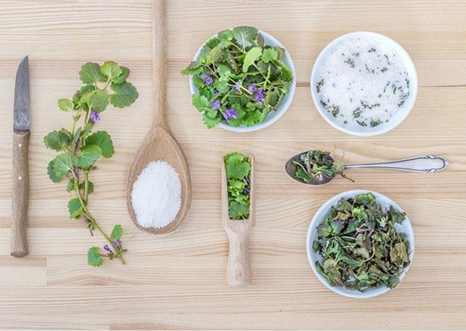 Lista ziół, które możesz bezpiecznie stosować w okresie laktacji - blog | paniDoktor